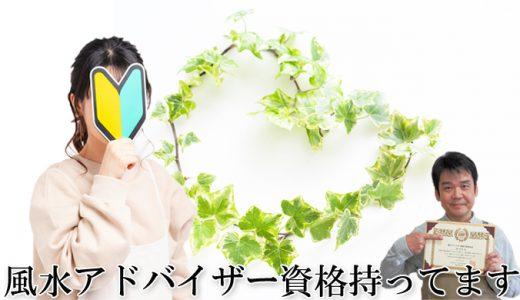 すぐ実践!【風水観葉植物の始め方3ステップ】風水アドバイザーご提案